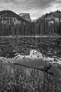 Nymph lake in Rocky Mountain National Park on a calm cool morning. - The_Midwest Photograph