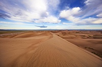 At Great Sand Dunes National Park and Preserve, dunes flow into the west as white clouds float high above. - Colorado Landscape Photograph