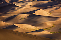 A collection of sand dunes glow in the morning sun at Great Sand Dunes National Park, Colorado. - Colorado Landscape Photograph