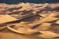 Sand dunes glow in the morning sun at Great Sand Dunes National Park, Colorado. - Colorado Landscape Photograph