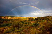 After an intense day of rain a beautiful rainbow appears over a canyon in the west area of Mesa Verde National Park. - Colorado Landscape Photograph
