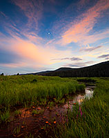 The Kawuneeche Valley is a marshy meadow area on the western side of Rocky Mountain National Park in Colorado. In the native Arapaho language Kawuneeche means �valley of the coyote� and indeed, many animals are found traveling through the valley. On this still July evening, there was a herd of elk that had quietly moved through and were eating on the trail. Not wanting to disturb them too much I kindly asked them to move as I slowly walked by. They obliged and I was on my way, as the last remnants of light illuminated the western edge of the clouds casting a dull glow across the meadow. - Colorado Photograph