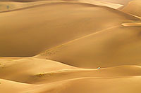 A tent stands on a distant dune in Great Sand Dunes National Park and Preserve in south central Colorado. - Colorado Outdoor Photograph Photograph