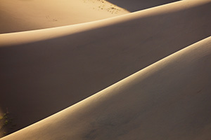 Details of sand dunes in the morning light at Great Sand Dunes National Park, Colorado. - Colorado Landscape Photograph