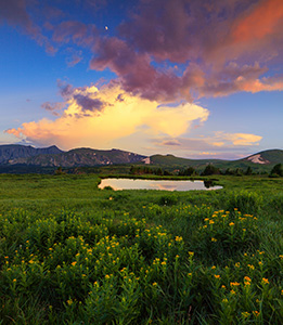 Thunder rumbles in the distance as a storm cloud moves over the mountains and wildflowers bloom near a tarn on the tundra in Rocky Mountain National Park. - Colorado Photograph