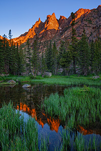 I've hiked several times to beautiful Emerald Lake in Rocky Mountain National Park.  On this excursion, I decided to go off the beaten path a bit and follow the stream that flows out of the lake.  I was rewarded with a beautiful sunrise on Flattop reflected in this verdant little marshy area. - Colorado Photograph