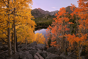 On a warm autumn day, from an aspen grove above Bear Lake, the morning sun graces Long's Peak with a reddish hue. - Colorado Landscape Photograph