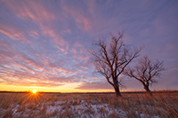 The sun warms the landscape on a frigid cold winter day at Boyer Chute National Wildlife Refuge. - Nebraska Landscape Photograph