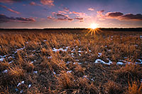 On a cold February day I visited the field of restored prairie grass at DeSoto National Wildlife Refuge for a sunset shot as the sun hit the horizon. - Nebraska Photograph
