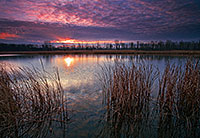 On a late fall morning, the sun rises slowly over DeSoto Lake at DeSoto National Wildlife Refuge. - Iowa Photograph