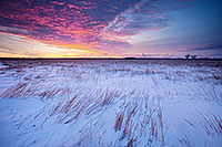 On a cold, early January morning, a snow covered prairie at Boyer Chute National Wildilfe Refuge is greated with a beautiful sunrise.  Due to the very low temperatures, on the horizon a light pillar is visible where in the location the sun will eventually rise. - Nebraska Landscape Photograph