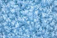 On a cold winter day snow crystals form on Lake Wehrspann at Chalco Hills Recreation Area in Nebraska. - Nebraska Close-Up Photograph