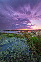 On a warm summer evening, the sun sets in the west as clouds roll over a salt creek marsh at Jack Sinn Wildlife Management Area. - Nebraska Photograph