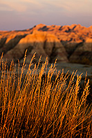 Just as dusk falls on a warm summer afternoon the final light of the sun illuminates prairie grass and the tops of the craggy landscape in Badlands National Park in South Dakota. - South Dakota Landscape Photograph