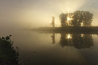 Morning fog rises from an offshoot of the Missouri at Ponca State Park in northeastern Nebraska. - Nebraska Photograph