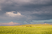 Storm clouds gather over a wheat field nestled in the sandhills of western Nebraska. - Nebraska Photograph