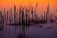 At a small lake at Jack Sinn Wildlife Management Area near Ceresco, dark reeds contrast with the vibrant hues of oranges and purples of the late evening sky. - Nebraska Photograph