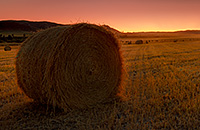 On a cool September evening I found these hay bales in Ft. Robinson State Park, Nebraska. The intense sunset cast an orange light across the field giving everything a warm amber glow. As I stood in the field I could smell the fresh cut hay, reminding me of hay bale rides and fun autumn days. - Nebraska Nature Photograph