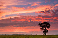 In the fall of 2006 I photographed this spectacular sunset at Boyer Chute National Wildlife Refuge across the prairie. - Nebraska Photograph