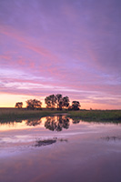A beautiful Nebraska sunset is reflected in the Frank Shoemaker marsh near Lincoln, Nebraska. - Nebraska Photograph