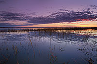 A warm glow illuminates the horizon just prior to sunrise on the North Marsh lake at Valentine National Wildlife Refuge, Nebraska. - Nebraska Photograph