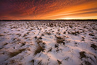 This photograph was taken 20 minutes after sunset when the clouds in the sky were still alit with the magnificent winter light at Desoto National Wildlife Refuge, Nebraska.  - Nebraska Photograph