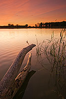 The Oxbow at DeSoto Bend National Wildlife Refuge ripples gently in the wind. - Nebraska Photograph