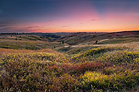 On an early fall evening, the final rays of the sun are briefly visible across Chadron State Park, Nebraska. - Nebraska Photograph
