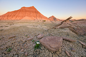 A Nebraska landscape photograph of Toadstool Geologic Park at sunrise. - Nebraska Photograph