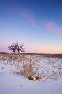 On a cold, winter day, dusk falls upon the prairie at Boyer Chute National Wildlife Refuge in eastern Nebraska. - Nebraska Landscape Photograph