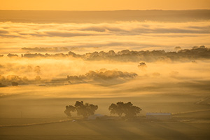 A scenic landscape photograph of the first sunrise light illluminating the fog across the Nebraska plains. - Nebraska Photograph