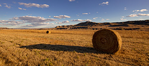A scenic landscape pano photograph of hay bales at Ft. Robinson in Northwestern Nebraska. - Nebraska Landscape Photograph