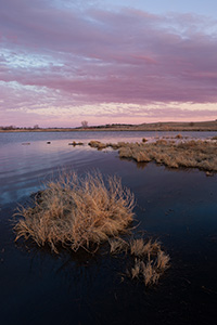 Dusk descends over a pond on the Little Salt Fork Marsh in Lancaster County near Raymond, Nebraska. - Nebraska Landscape Photograph