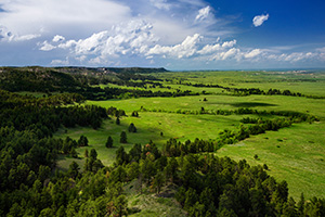 Gilbert-Baker WMA is part of the Pine Ridge escarpment in extreme western Nebraska.  It is so close to Wyoming, in fact, that the ridge that is furthest in the distance is the state border.  On this spring day I watched as storm clouds rolled through dropping rain and leaving everything a verdant green. - Nebraska Landscape Photograph