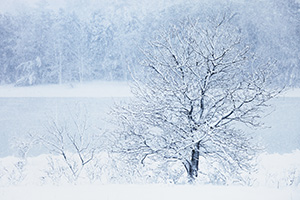 Snow falls on Wehrspann Lake at Chalco Hills Recreation Area on a cold February morning. - Nebraska Photograph