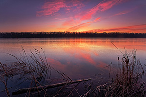 Sunrise on a chilly late November morning in DeSoto National Wildlife Refuge.  That morning frost clung to the cattails and logs and the lake had a slight layer of ice that had formed overnight which reflected the light of the rising sun. - Iowa Photograph