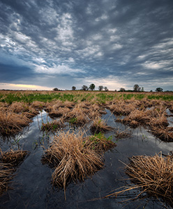 Clouds roll in and obscure the sun at Jack Sinn Wildlife Management Area. - Nebraska Photograph
