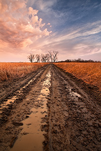 After an early spring rain, the prairie landscape is drenched creating puddles in a newly plowed road. - Nebraska Photograph
