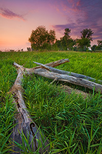 Evening descends at Boyer Chute National Wildlife Refuge. - Nebraska Photograph