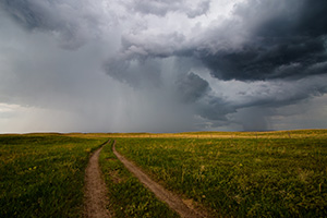 An ominous storm hovers over a two track in McKelvie National Forest.  The clouds slowly roll through dropping rain over the sandhills while lightning lights up the sky and the sound of thunder fills the air. - Nebraska Photograph