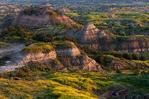 Bluffs in the Painted Canyon in Theodore Roosevelt National Park glow warm from the light of early morning. - North Dakota Photograph