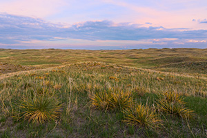 As twilight descends, a calm comes over an expanse of the sandhills in Cherry County, Nebraska. - Nebraska Photograph