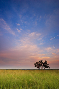 Sunset descends over the native prairie at Boyer Chute National Wildlife Refuge. - Nebraska Photograph