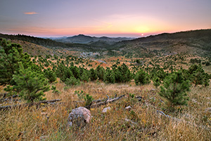 In the distance the sun rises above the peaks of the Black Hills in Custer State Park in South Dakota. - South Dakota Landscape Photograph