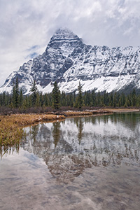 Mt. Cephron rises above the Mistaya River in Banff National Park, Alberta, Canada. - Canada Photograph