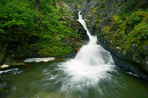 Aster Falls in Glacier National Park, Montana. - 777 Photograph