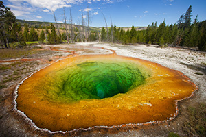 One of the most popular geysers in Yellowstone is the colorful Morning Glory Geyser in the Lower Geyser Basin. - Wyoming Landscape Photograph