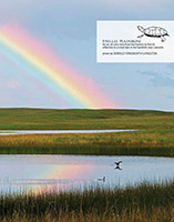 Nebraska Life March-April 2018 Sandhills Rainbow Feature - Nebraska Life.  Contributed Photograph. - Tear Sheet Photograph